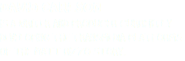 DAVID CARLSON IS A WRITER AND PRODUCER CURRENTLY DEVELOPING THE TRANSMEDIA PLATFORMS OF THE MATT RIZZO STORY.